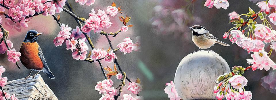 Bülbüller Ötecek